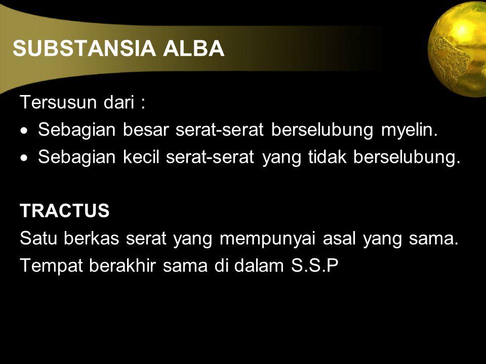 SUBSTANSIA ALBA Tersusun dari :