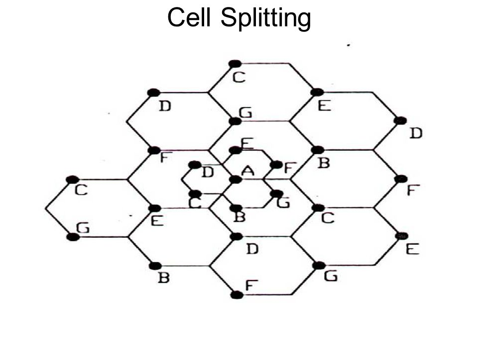 Cell Splitting