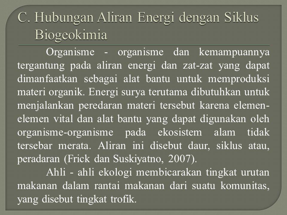 C. Hubungan Aliran Energi dengan Siklus Biogeokimia