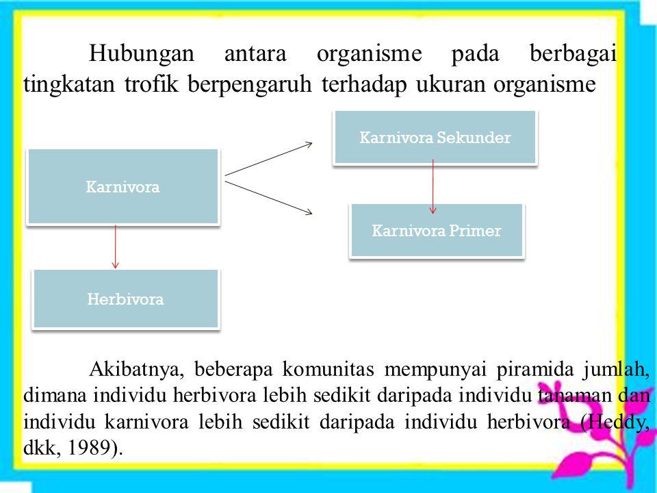Hubungan antara organisme pada berbagai tingkatan trofik berpengaruh terhadap ukuran organisme.