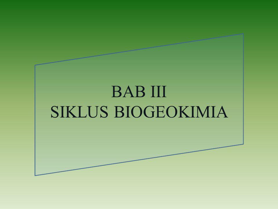 BAB III SIKLUS BIOGEOKIMIA