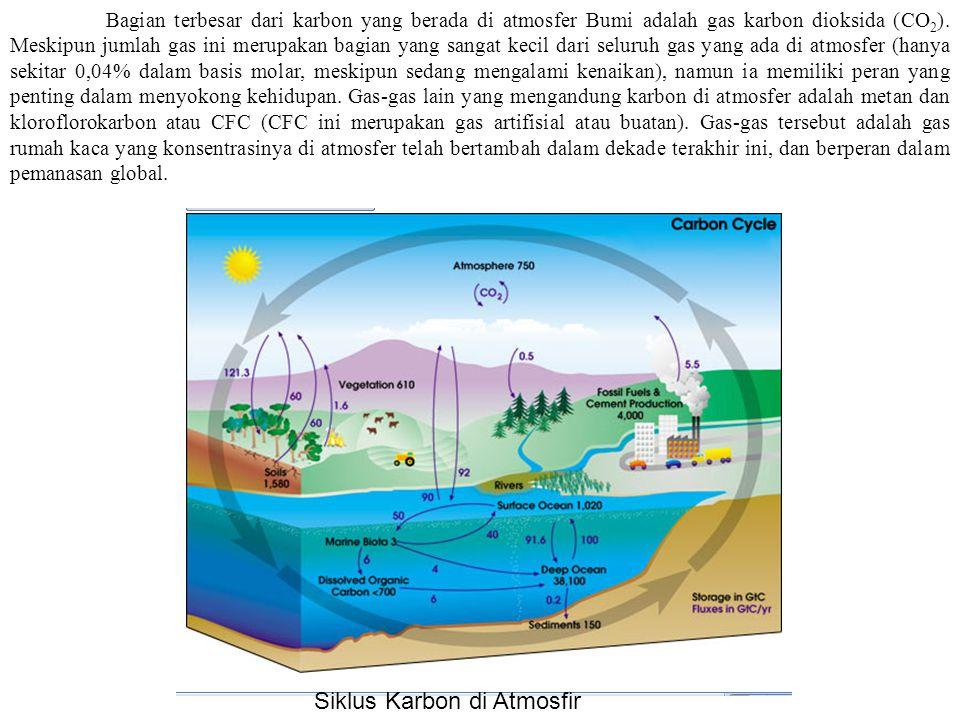 Siklus Karbon di Atmosfir