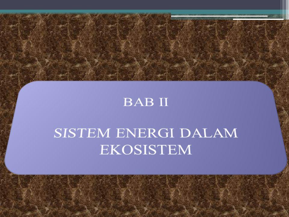 SISTEM ENERGI DALAM EKOSISTEM