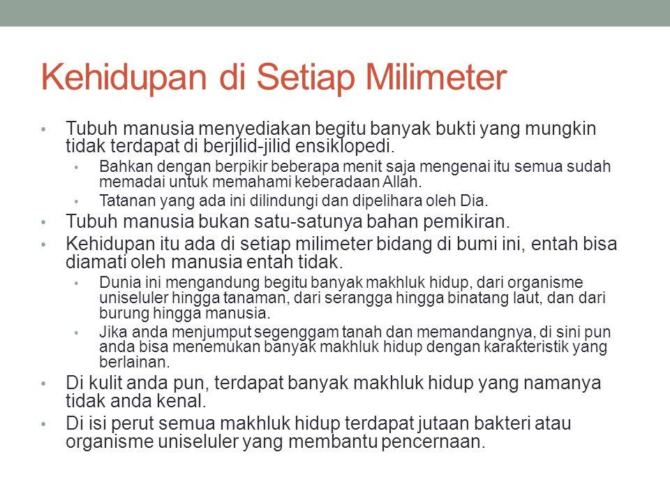 Kehidupan di Setiap Milimeter