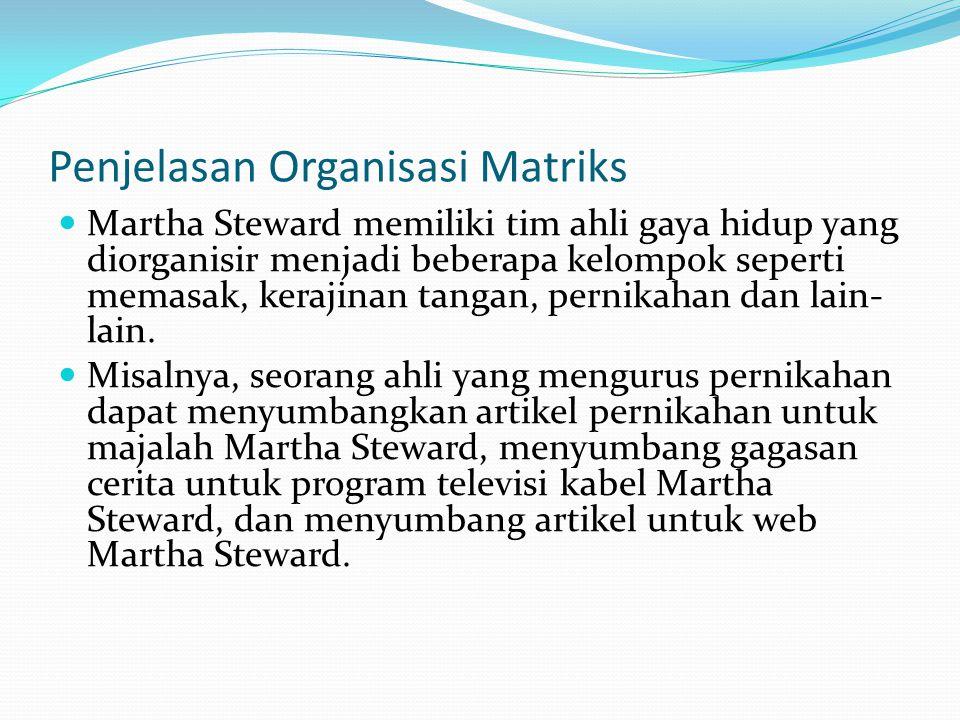 Penjelasan Organisasi Matriks