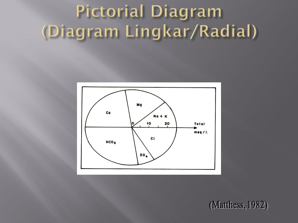 Pictorial Diagram (Diagram Lingkar/Radial)