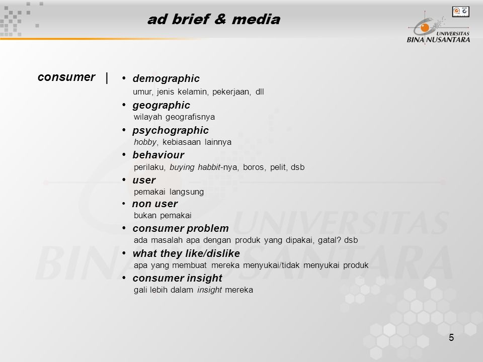 ad brief & media consumer | demographic geographic psychographic