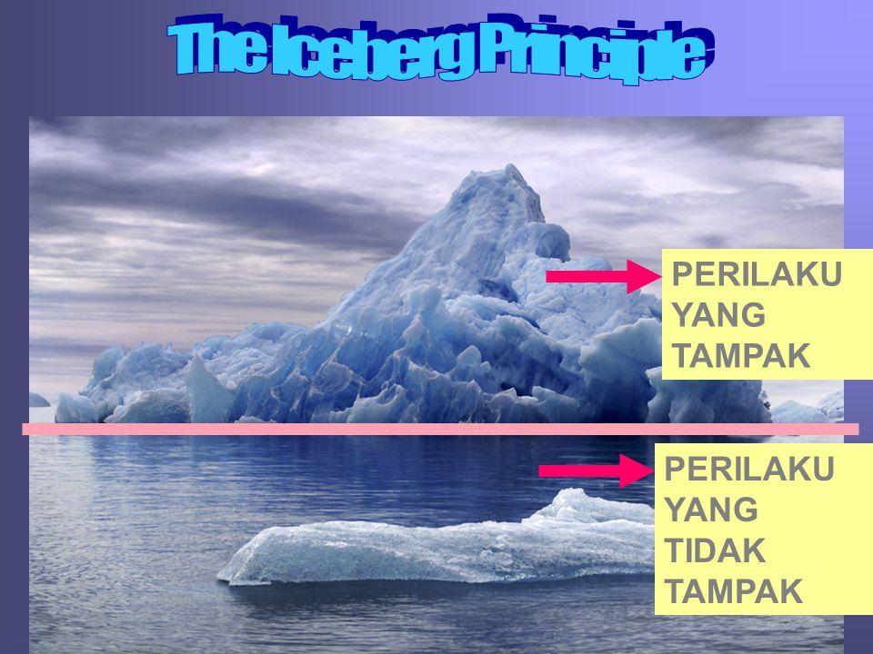The Iceberg Principle PERILAKU YANG TAMPAK PERILAKU YANG TIDAK TAMPAK