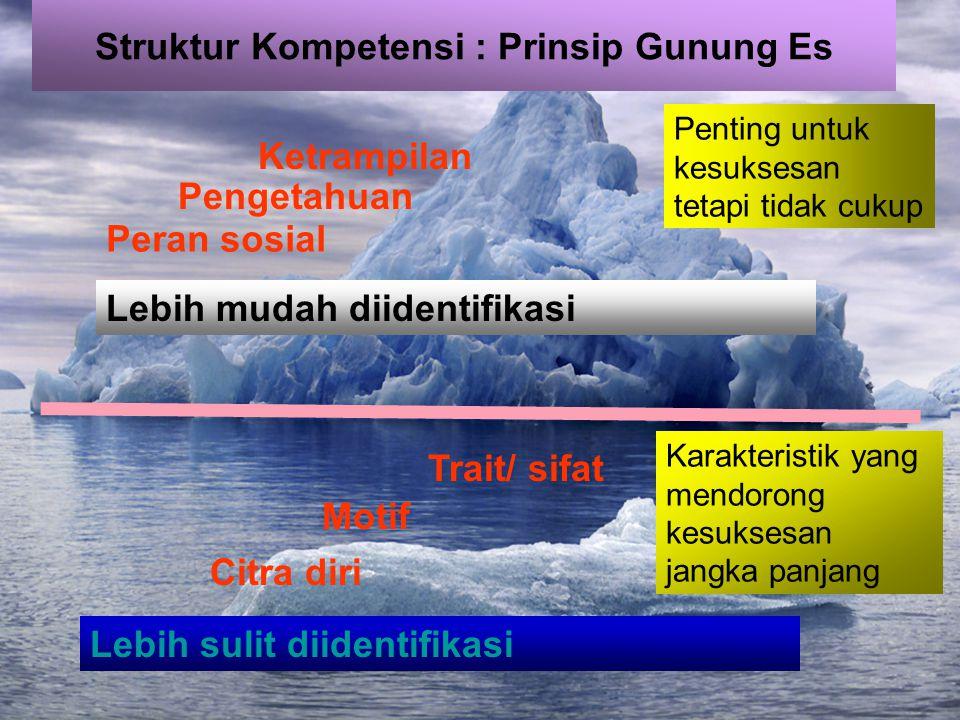 Struktur Kompetensi : Prinsip Gunung Es