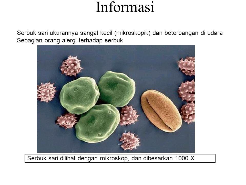 Informasi Serbuk sari ukurannya sangat kecil (mikroskopik) dan beterbangan di udara. Sebagian orang alergi terhadap serbuk.