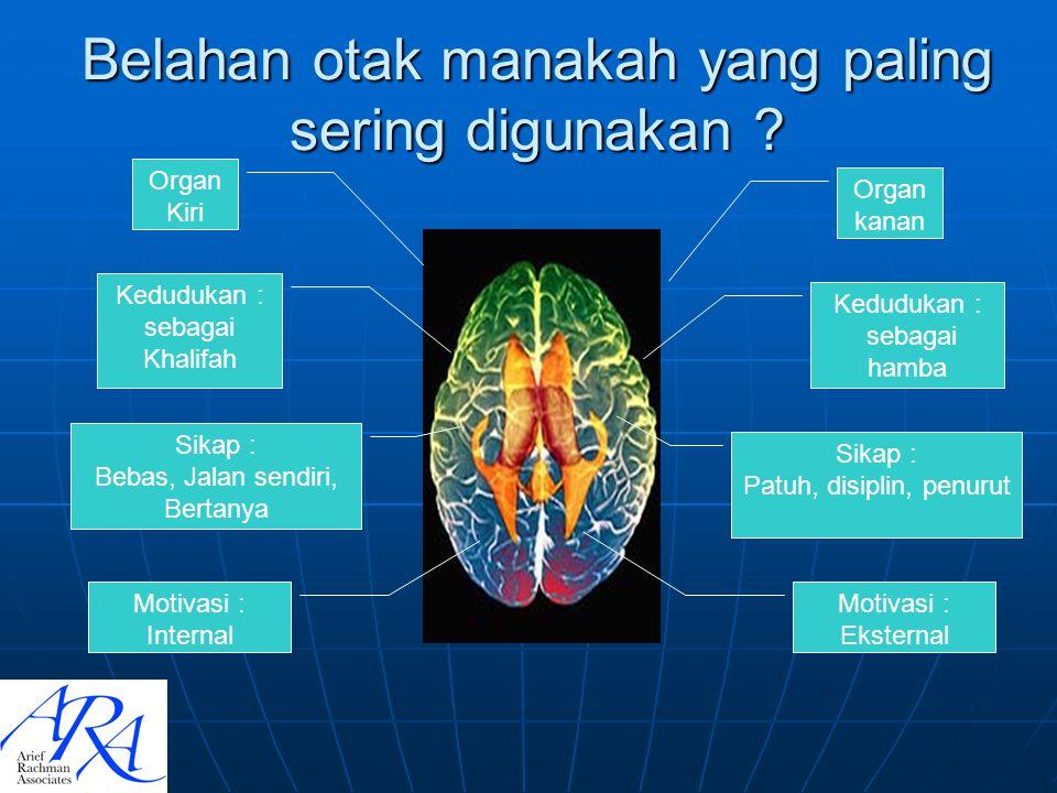 Belahan otak manakah yang paling sering digunakan