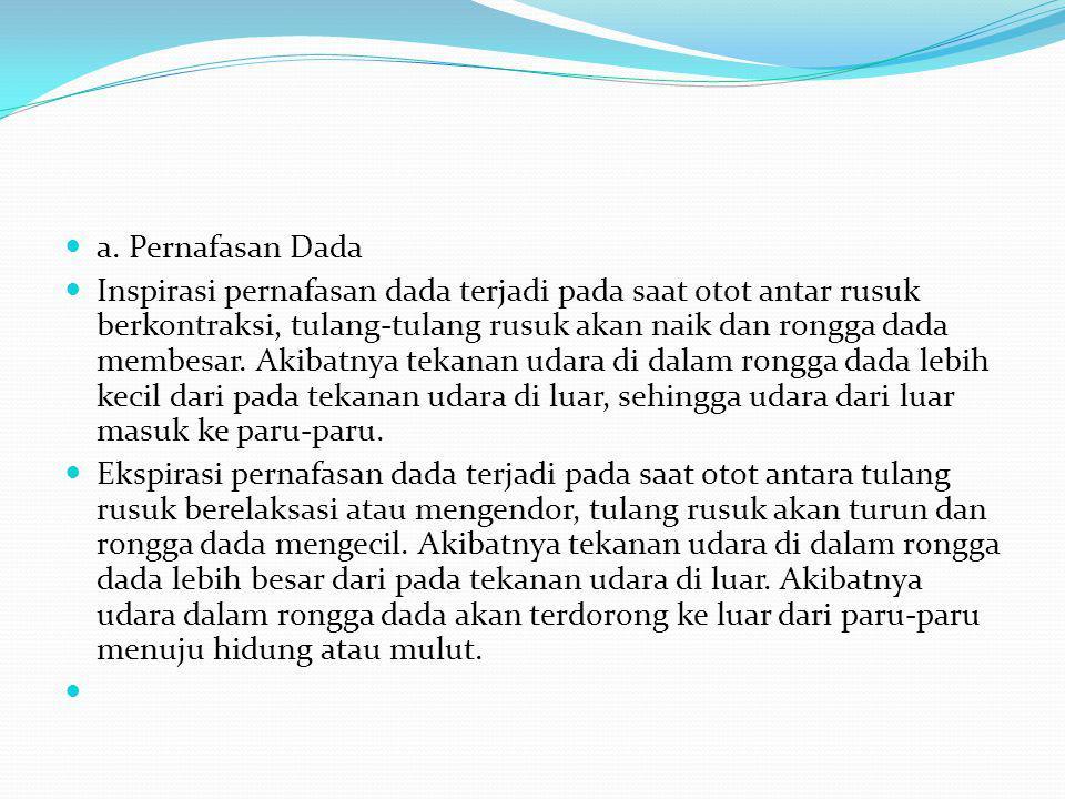 a. Pernafasan Dada