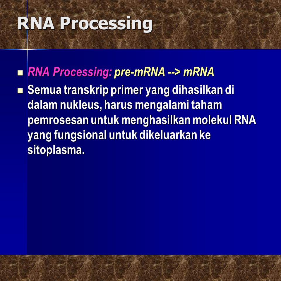RNA Processing RNA Processing: pre-mRNA --> mRNA