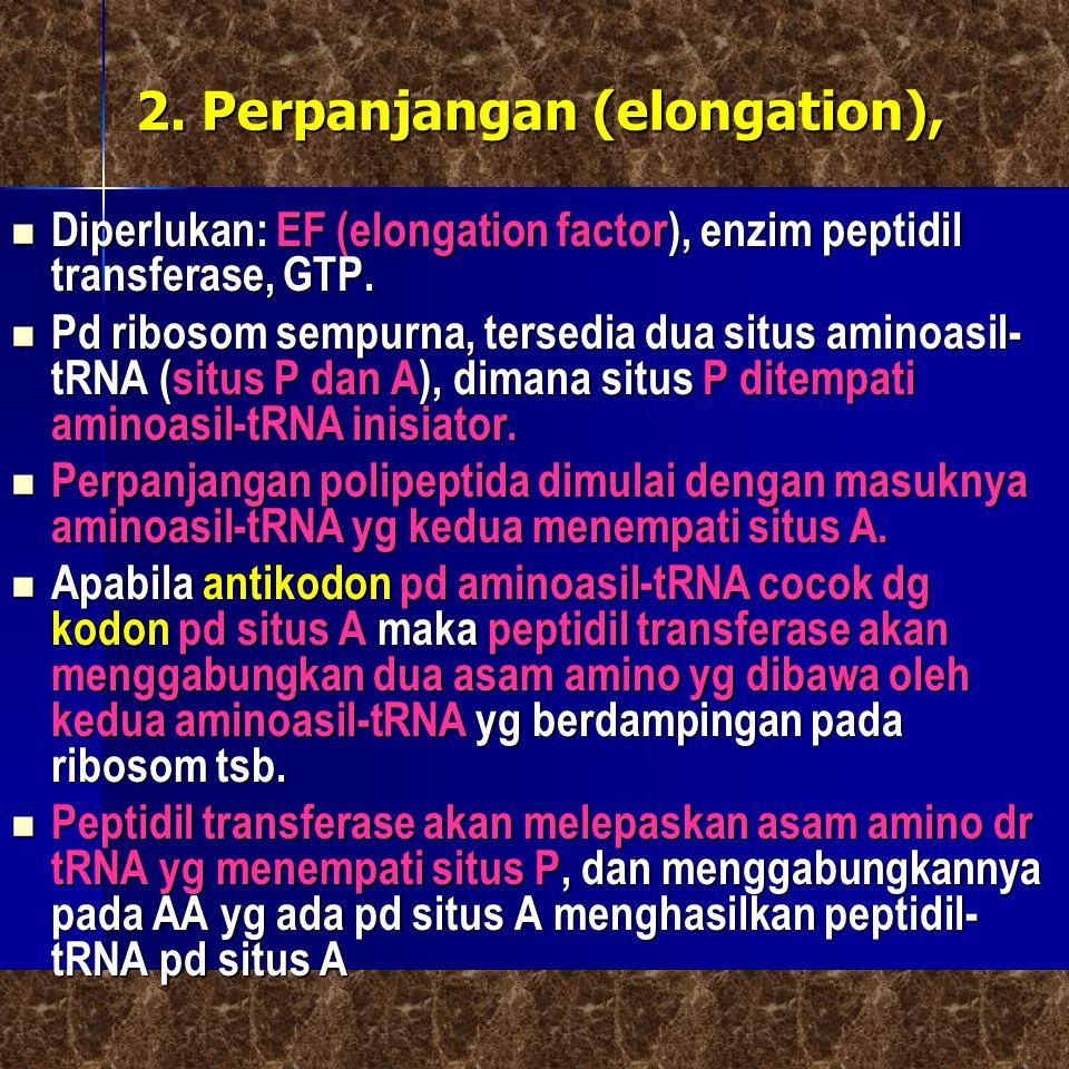 2. Perpanjangan (elongation),