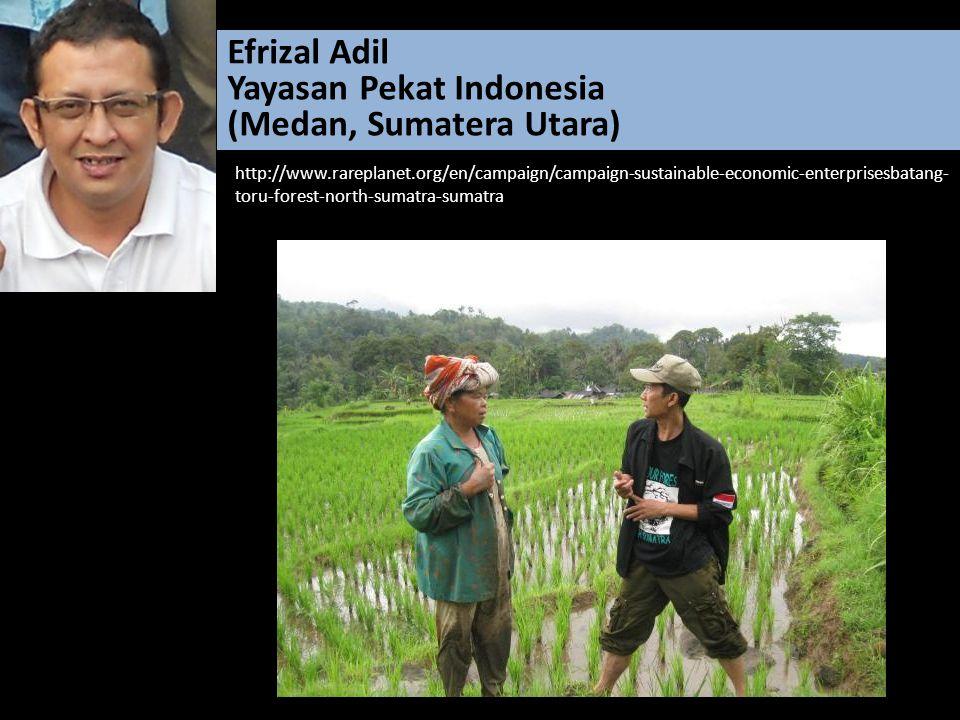 Yayasan Pekat Indonesia (Medan, Sumatera Utara)