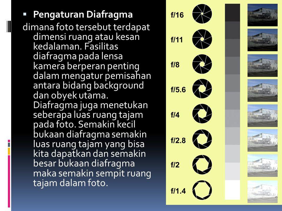 Pengaturan Diafragma