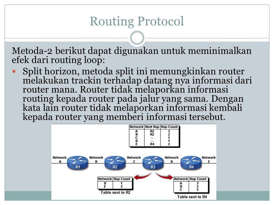 Routing Protocol Metoda-2 berikut dapat digunakan untuk meminimalkan efek dari routing loop: