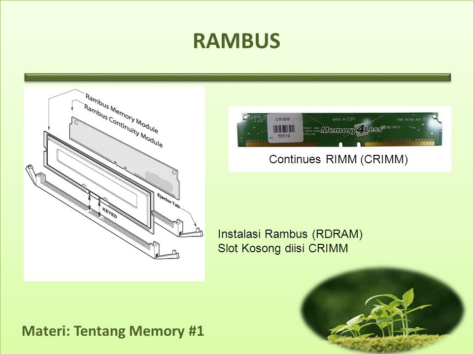 RAMBUS Continues RIMM (CRIMM) Instalasi Rambus (RDRAM)