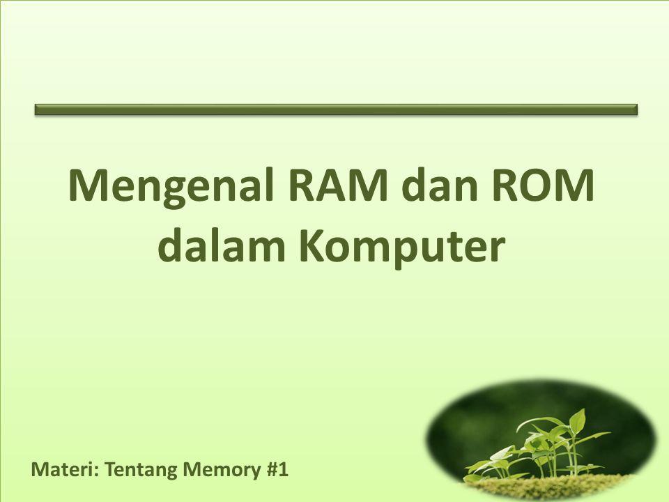 Mengenal RAM dan ROM dalam Komputer