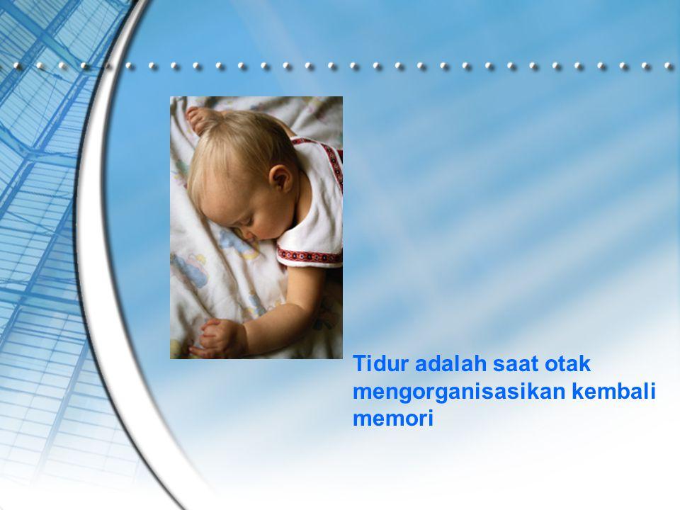 Tidur adalah saat otak mengorganisasikan kembali memori