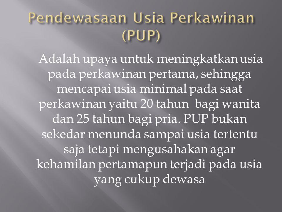Pendewasaan Usia Perkawinan (PUP)
