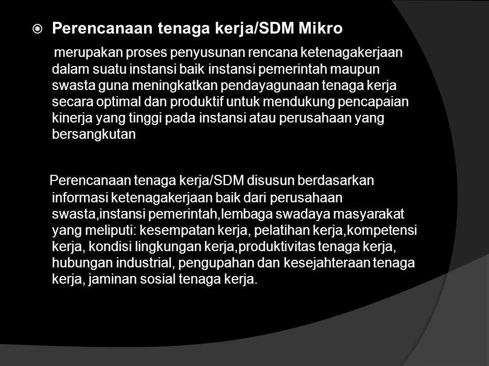 Perencanaan tenaga kerja/SDM Mikro