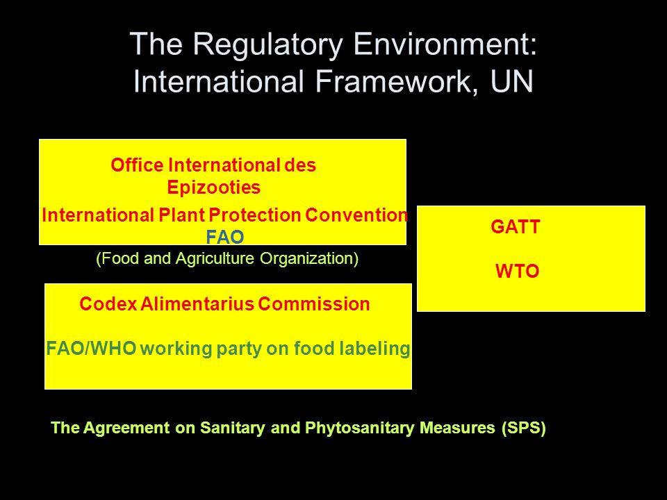 The Regulatory Environment: International Framework, UN