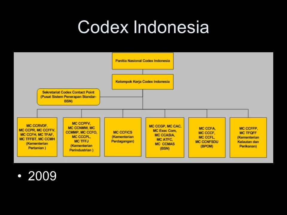 Codex Indonesia 2009