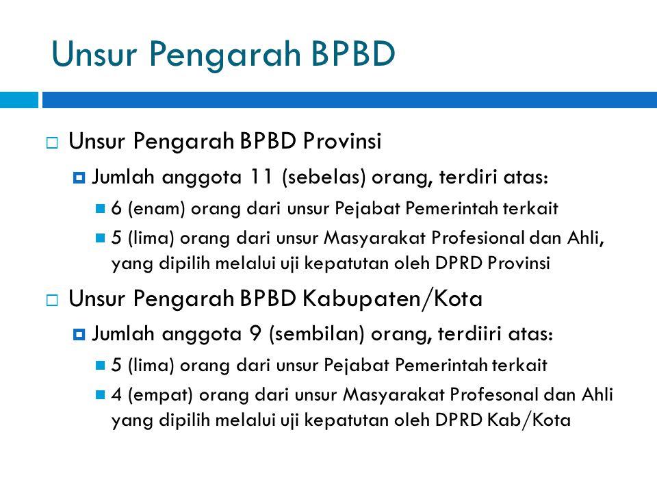 Unsur Pengarah BPBD Unsur Pengarah BPBD Provinsi
