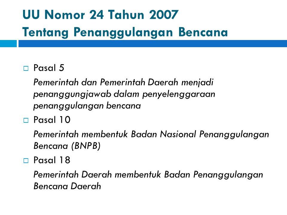 UU Nomor 24 Tahun 2007 Tentang Penanggulangan Bencana