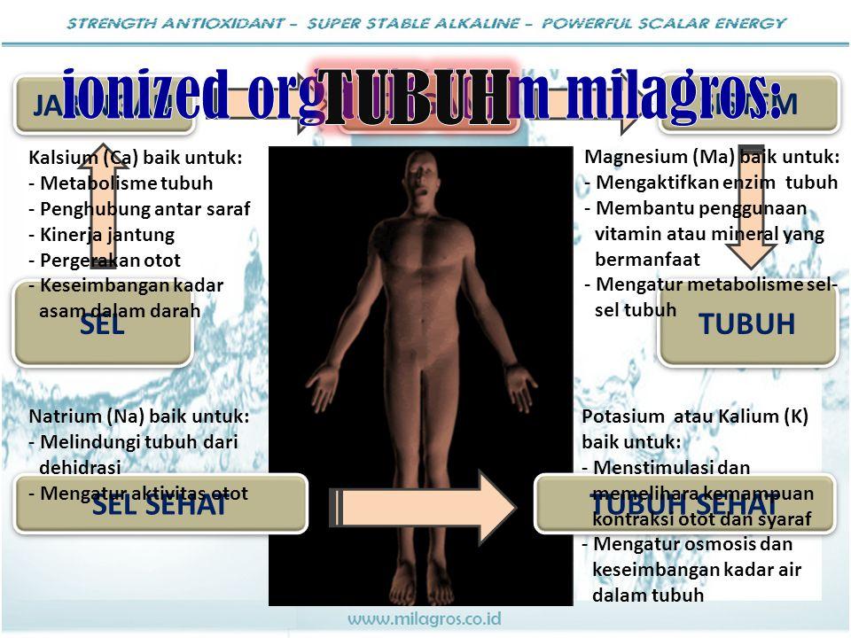 ionized organic form milagros: