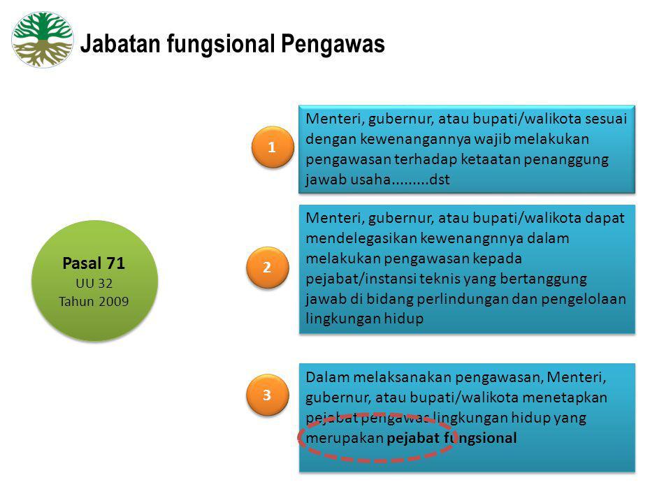 Jabatan fungsional Pengawas