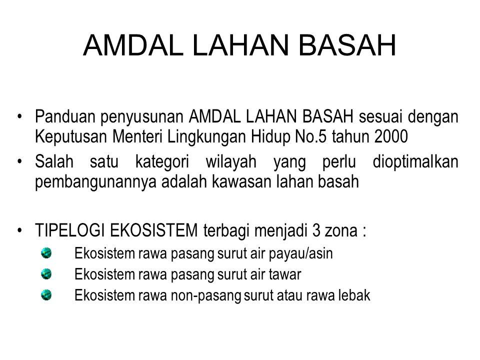 AMDAL LAHAN BASAH Panduan penyusunan AMDAL LAHAN BASAH sesuai dengan Keputusan Menteri Lingkungan Hidup No.5 tahun 2000.