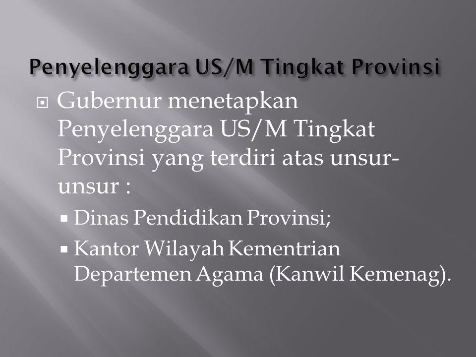 Penyelenggara US/M Tingkat Provinsi