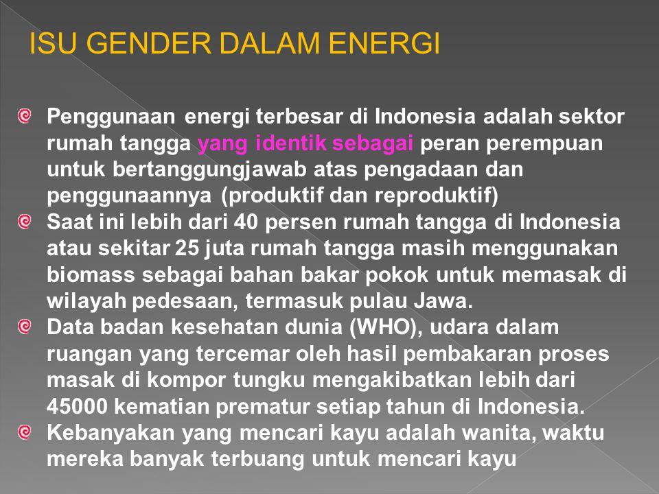 ISU GENDER DALAM ENERGI