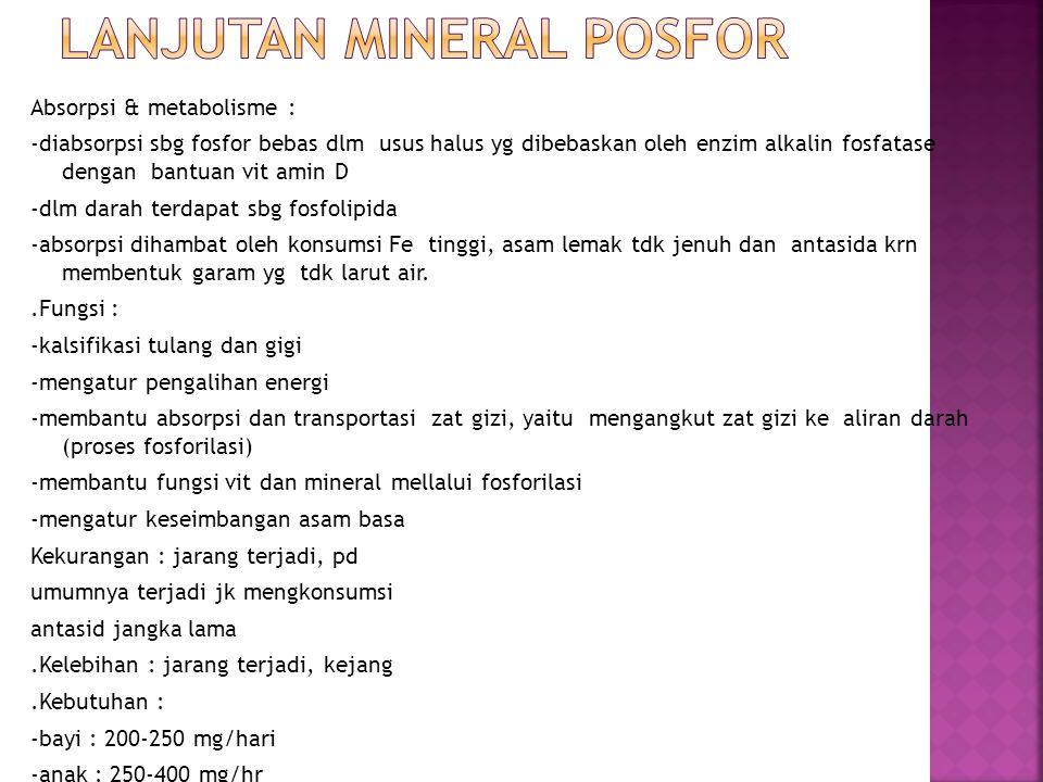 Lanjutan mineral posfor