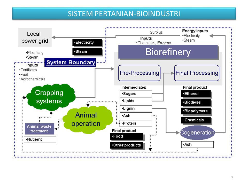 SISTEM PERTANIAN-BIOINDUSTRI