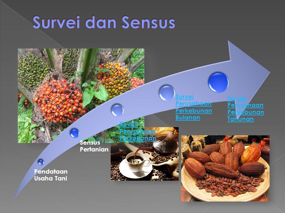 Survei dan Sensus Pendataan Usaha Tani Sensus Pertanian