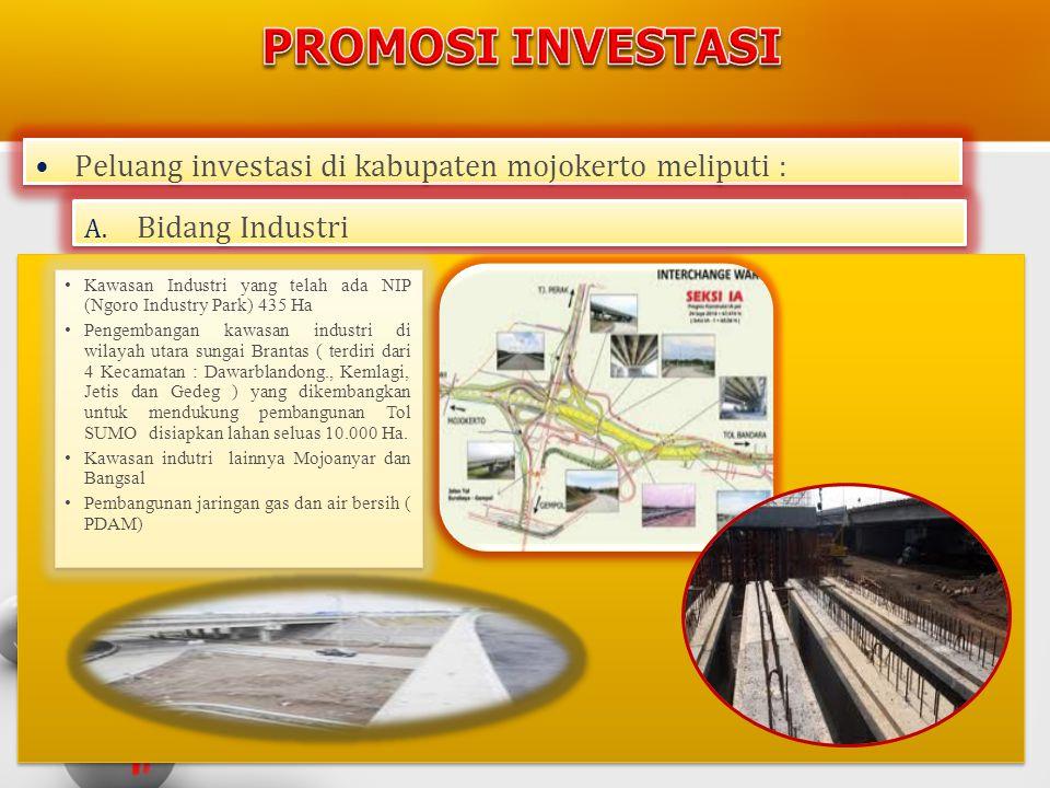 PROMOSI INVESTASI Peluang investasi di kabupaten mojokerto meliputi :