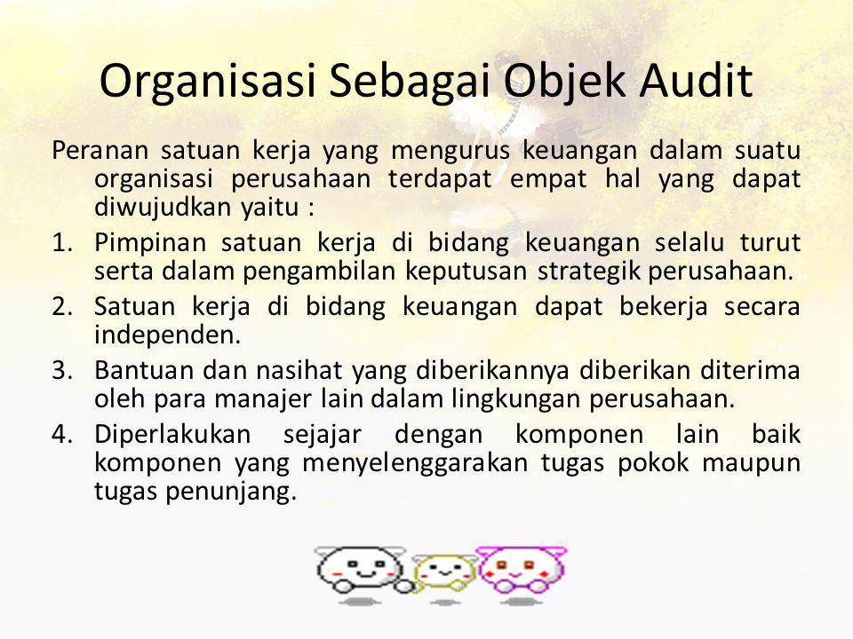 Organisasi Sebagai Objek Audit