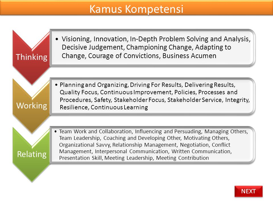 Kamus Kompetensi Thinking Working Relating
