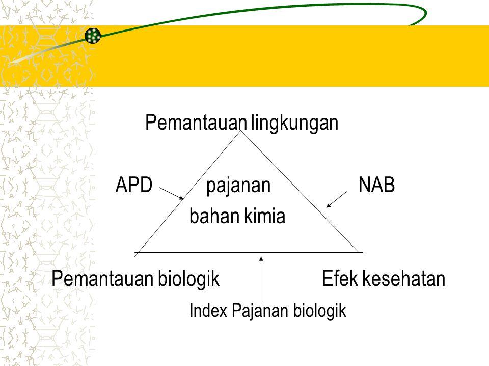 Pemantauan lingkungan