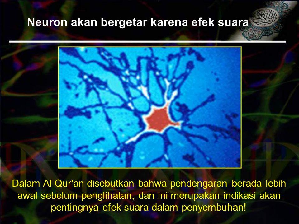 Neuron akan bergetar karena efek suara