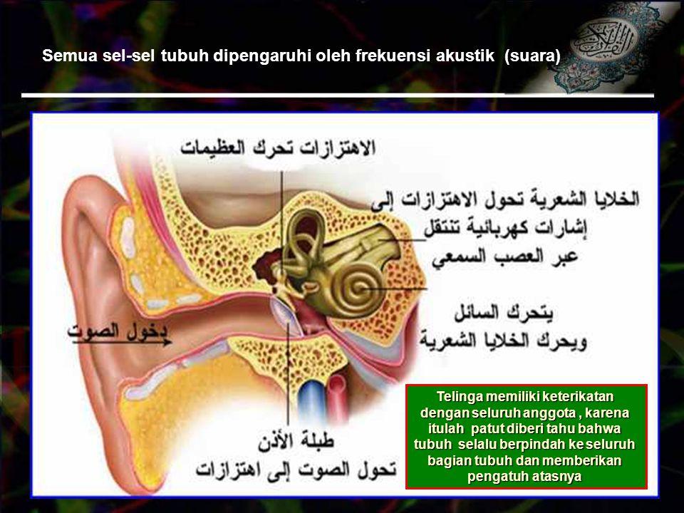 Semua sel-sel tubuh dipengaruhi oleh frekuensi akustik (suara)
