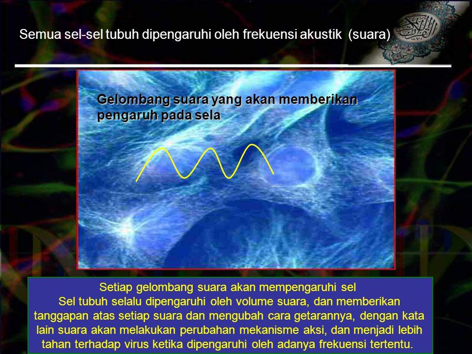 Setiap gelombang suara akan mempengaruhi sel