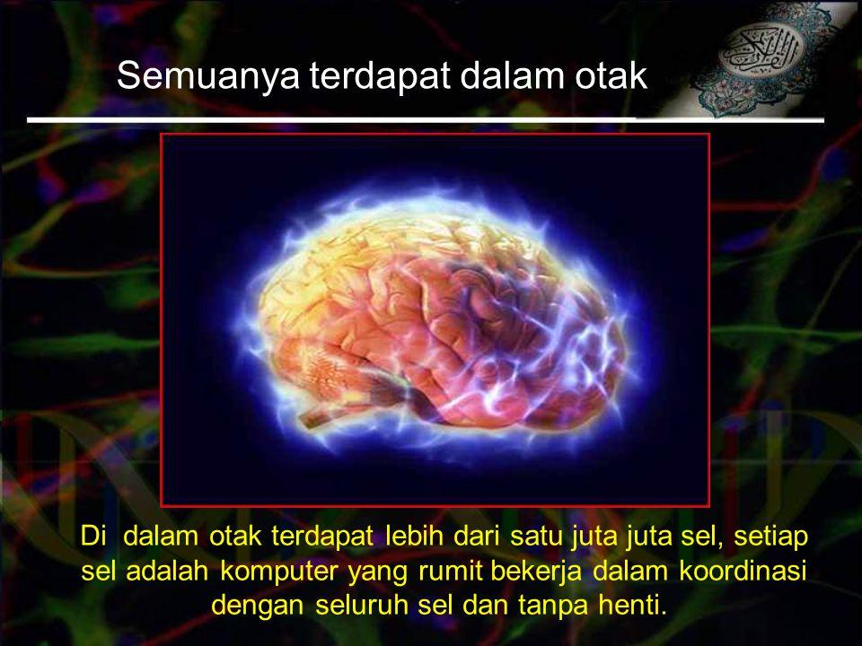 Semuanya terdapat dalam otak