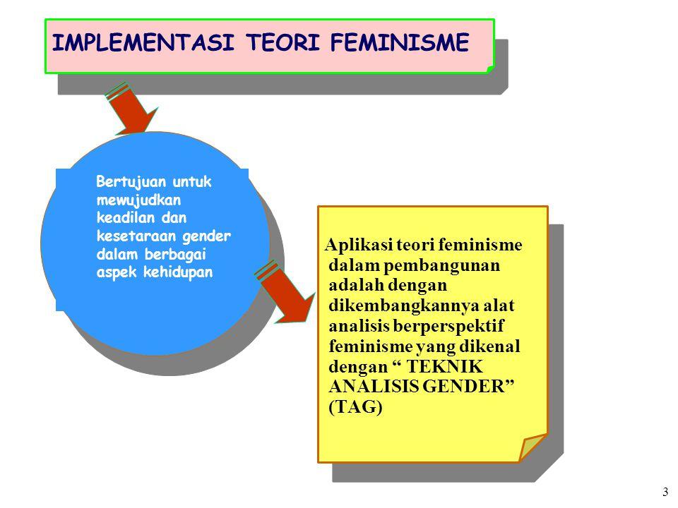 IMPLEMENTASI TEORI FEMINISME