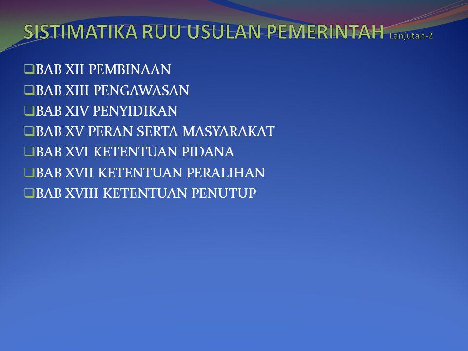 SISTIMATIKA RUU USULAN PEMERINTAH Lanjutan-2