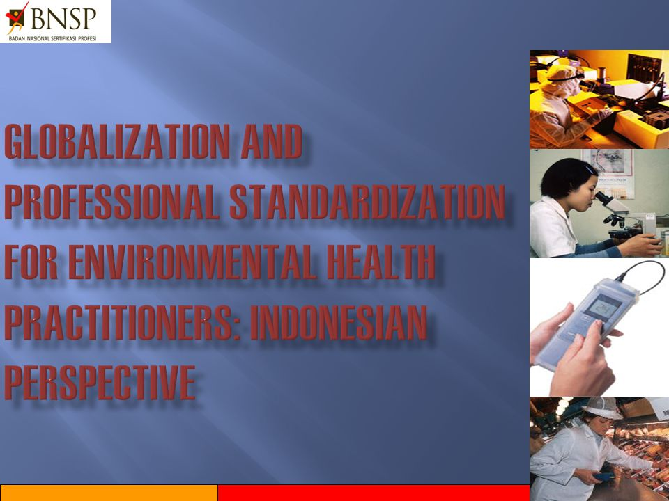 GLOBALIZATION AND PROFESSIONAL STANDARDIZATION FOR ENVIRONMENTAL HEALTH PRACTITIONERS: INDONESIAN PERSPECTIVE