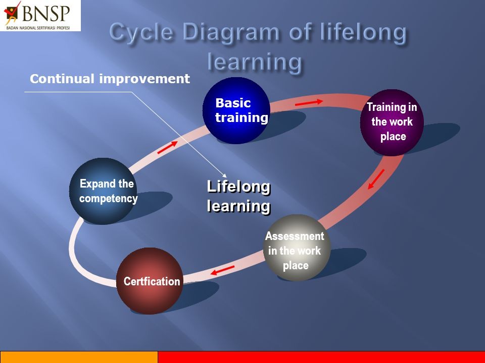 Cycle Diagram of lifelong learning